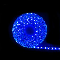 LED IP65 Strip Light 5m BLUE 5050 - LEDIP65BLUE5050
